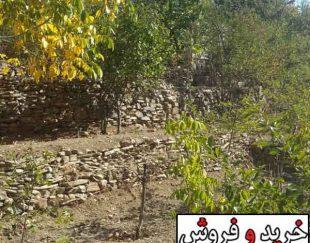 باغ در میگون