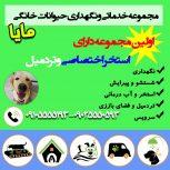 پانسیون حیوانات خانگی مایا